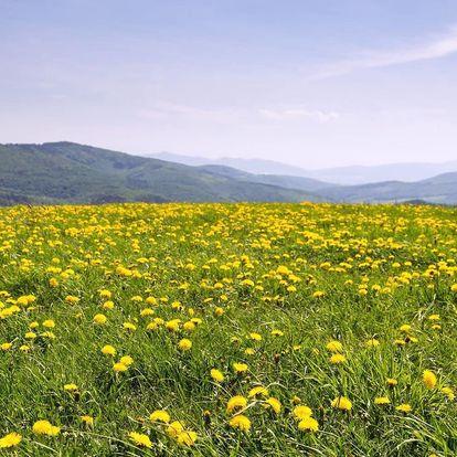 Penzion s rodinnou atmosférou uprostřed přírody