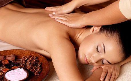 Masáž dle výběru v nově otevřeném wellness centru