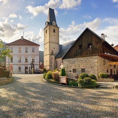 Hotel U Martina u hradu Rožmberk s polopenzí