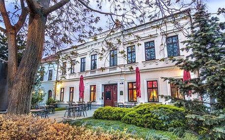 Jižní Morava: Hotel Drnholec *** s polopenzí a neomezeným vínem či lázněmi