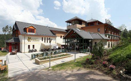 Orlické hory: Hotel Studánka