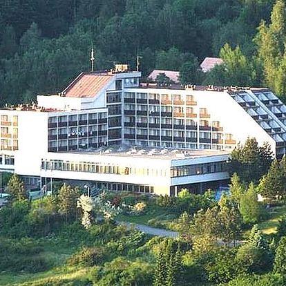 3 denní wellness pobyt pro dva v hotelu Petr Bezruč***, s polopenzí, bazénem, infrasaunou, aj.