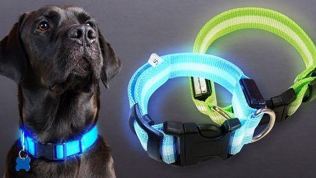Svítící LED obojky s nabíjením přes USB pro psy