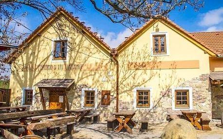 Jižní Morava: romantika se saunou, vínem a polopenzí v Penzionu U Tří Jasanů