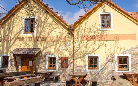 Penzion U Tří Jasanů ve Znojmě s wellness a ochutnávkou vína