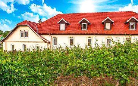 Znojmo v Hotelu Schaller s polopenzí, prohlídkou kláštera a ochutnávkou vína