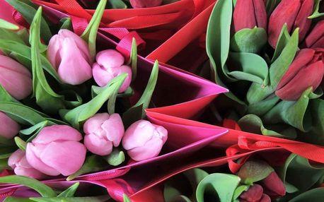 Dárková taška barevných tulipánů vč. dopravy