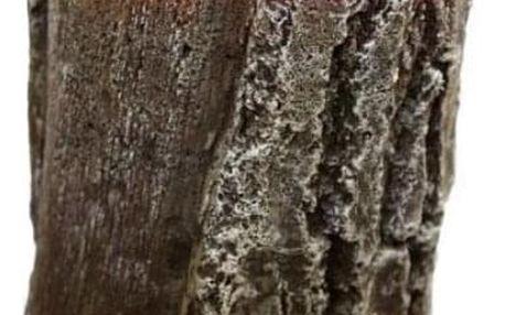 Svíčka ve tvaru dřevěného kmenu, věrná podoba dřeva s krásnou vůní a dlouhou dobou hoření.
