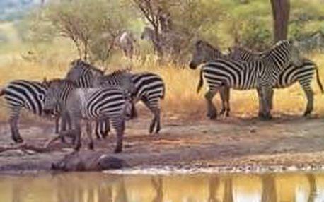 To nejlepší z Tanzanie a Zanzibaru - 12 dní s dopravou, ubytováním a polopenzí