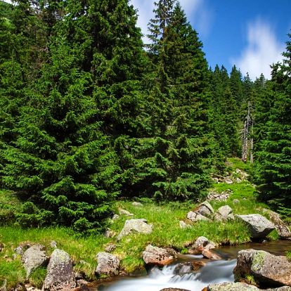 Pobyt v Jizerkách plný aktivit s polopenzí