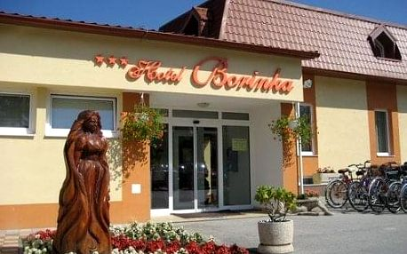 Hotel Borinka, Slovensko, polopenze