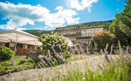Rakousko: Hotel Haus Lavendel u jezera se soukromou pláží a polopenzí