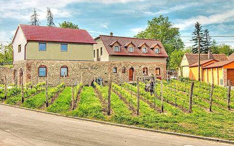Jižní Morava v rodinném vinařství se snídaní, degustací i s neomezenou konzumací vína