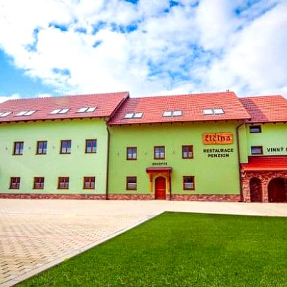 Jižní Morava s degustací vín blízko památek