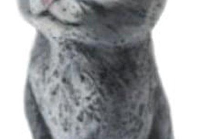 svíčka sedící kočka