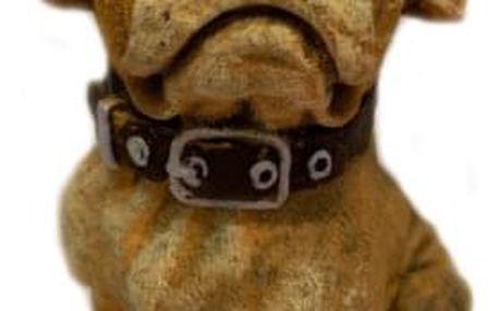 svíčka pes Boxer