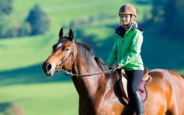 Svět z koňského hřbetu: Hodinová projížďka
