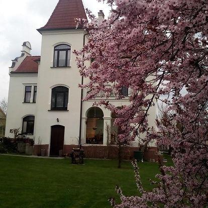Lázně Bechyně: Villa Liduška