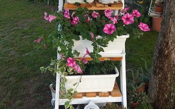 Dvoulůžkový pokoj s oddělenými postelemi a výhledem do zahrady a vlastní koupelnou2