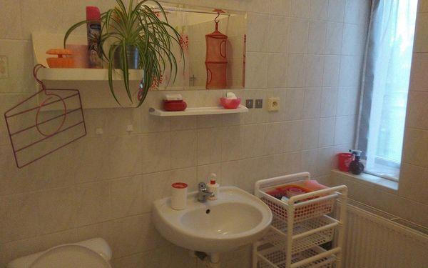 Dvoulůžkový pokoj s oddělenými postelemi a výhledem do zahrady a vlastní koupelnou3