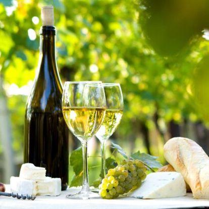 Jižní Morava s degustací vína a polopenzí v Penzionu U Tomčalů se sklípkem