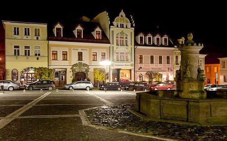 Wellness pobyt pro dva v Hotelu Morris v České Lípě