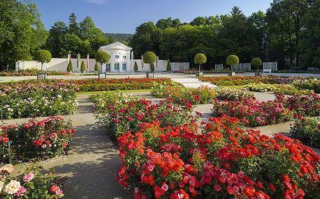 Slavnost růží a koupání lázních Baden – den plný květů a vůní | Jednodenní zájezd do Rakouska