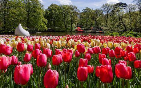 Rozkvetlá krása Holandska, Keukenhof, Nizozemsko, autobusem, snídaně v ceně