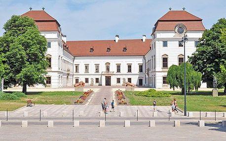 Maďarsko: 4* hotel se vstupem do termálů a polopenzí + neomezené wellness