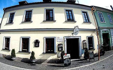 Wellness pobyt v 4*Hotelu Galerie pro dva, polopenze, relaxace v Lázních Aurora a lahev vína.