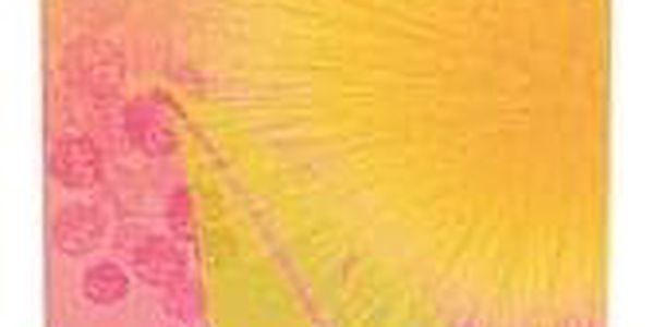 Elizabeth Arden Green Tea Mimosa toaletní voda 100 ml pro ženy2