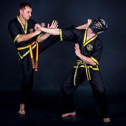 Wing Chun - individuální trénink s Mistrem