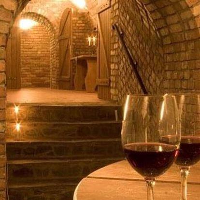 Ochutnávka vín s pobytem pro dva