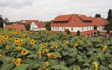 Romantika v Penzionu v Polích
