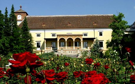 Rakousko: Hotel Schloss Weikersdorf Residenz & Spa