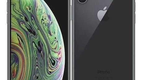 Mobilní telefon Apple iPhone Xs 64 GB - space grey (MT9E2CN/A)