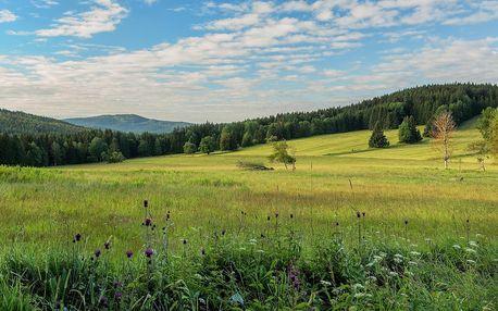 Rodinný penzion u Českého lesa: polopenze i bazén