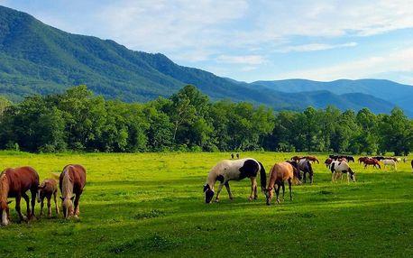 Nízké Tatry: ranč s polopenzí, privátní wellness