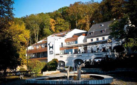 Teplice: Hotel U Kozičky