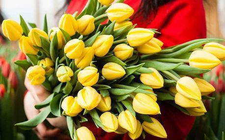Krásné pugéty holandských růží