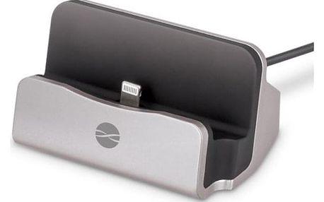 Forever DS-01 pro Apple iPhone stříbrný (ATCAPIP5DSTFSI)