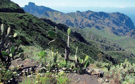 Tenerife s trekingem - turistika mezi sopkami a exotickými soutěskami, Tenerife