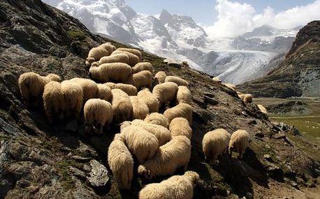 Alpská tour - nejkrásnější partie Alp pěti zemí, Tyrolsko