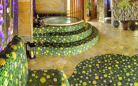 Štrbské Pleso, Hotel Fis*** se sportovním komplexem a wellness