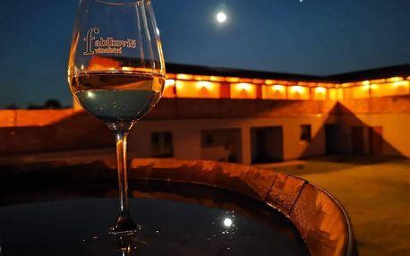 Velké Bílovice: Penzion Vinařství Fabikovič