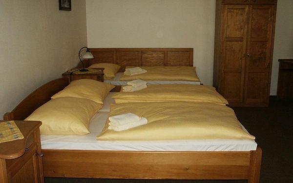 Dvojlůžkový pokoj s oddělenými postelemi2