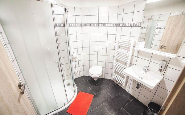 Třílůžkový pokoj s koupelnou5
