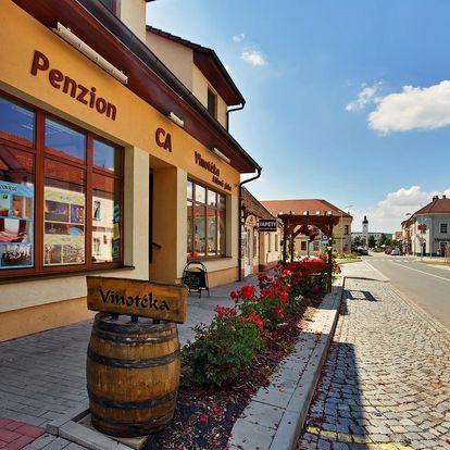 Kyjov: Penzion & Vinný bar Régio