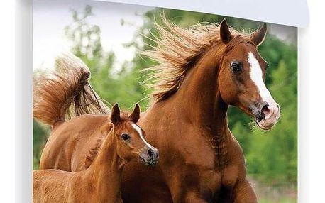 Jerry Fabrics Dětské bavlněné povlečení Horse 04, 140 x 200 cm, 70 x 90 cm
