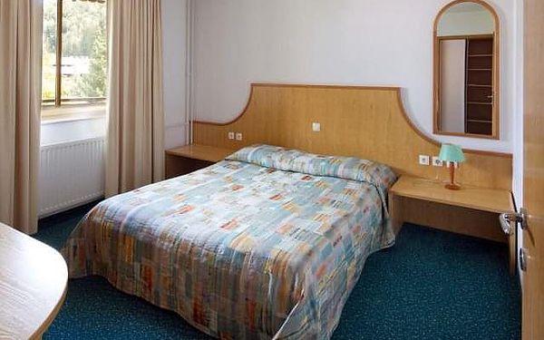 Apartmány Vitranc, Slovinsko, Hory a jezera Slovinska, Kranjska Gora, vlastní doprava, bez stravy2